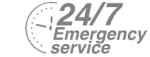 24/7 Emergency Service Pest Control in Kensington, W8. Call Now! 020 8166 9746