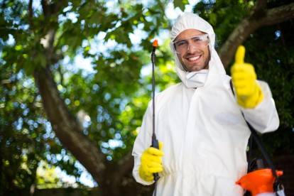Pest Control in Kensington, W8. Call Now 020 8166 9746