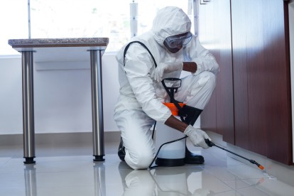 Emergency Pest Control, Pest Control in Kensington, W8. Call Now 020 8166 9746
